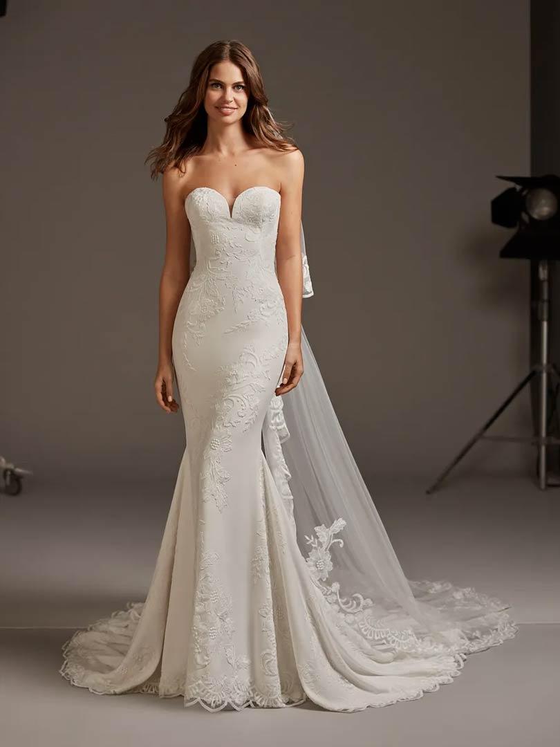 Pronovias Astrid Wedding Dress