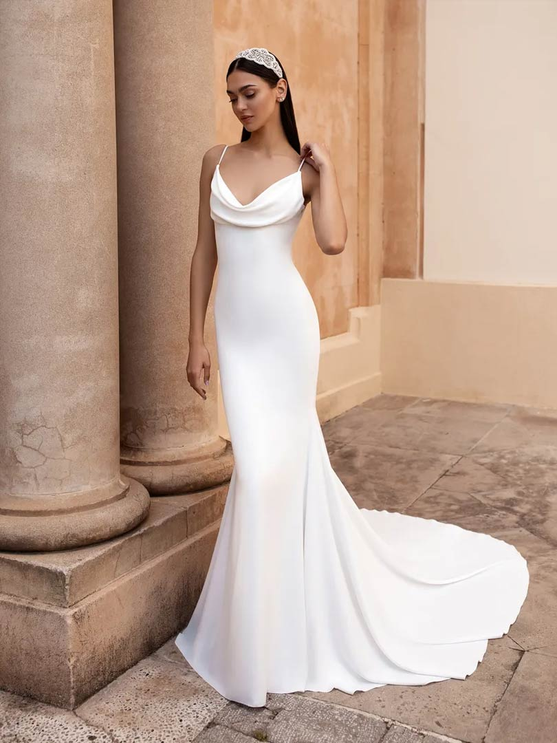 Pronovias Antiope Wedding Dress