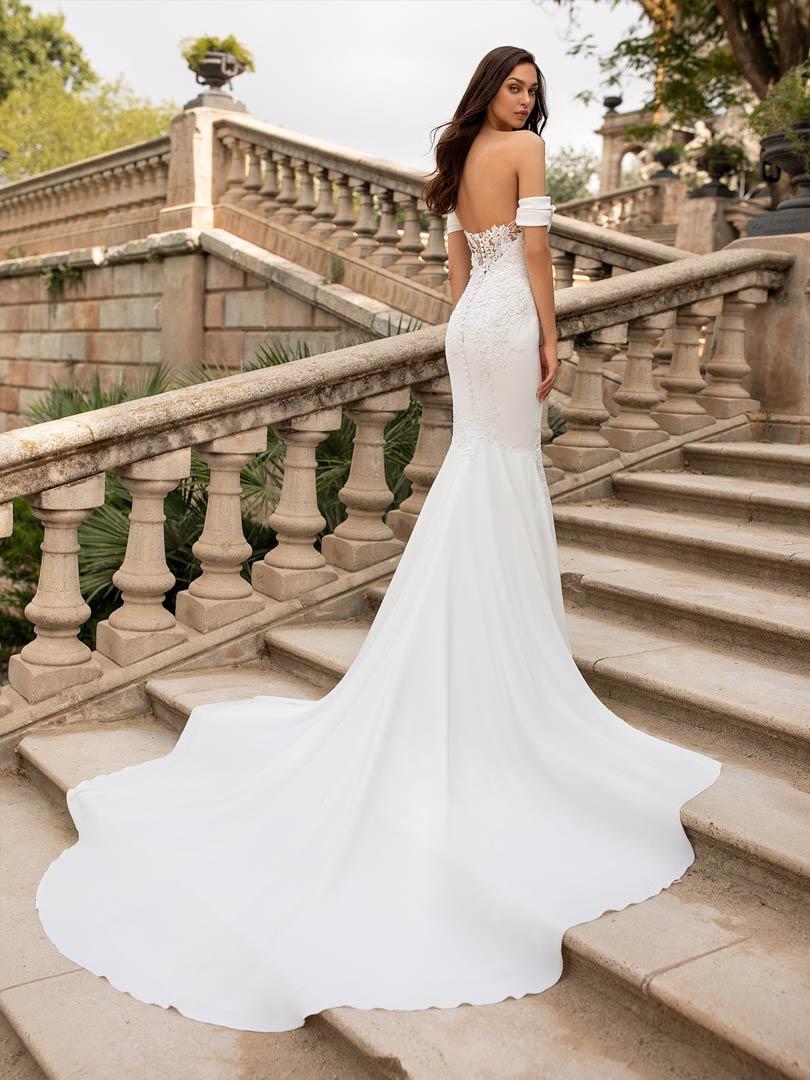 Pronovias Dante Wedding Dress